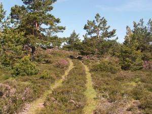 Začiatok cesty na kopec nad priesmykom