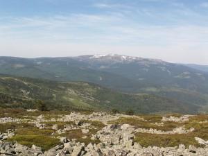 Kamenitý vrchol a pohľad z vrcholu na sever. Foto 5.6.2010, 11.00 hod.