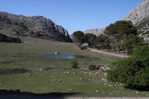 Posledná lokalita, kde by moli byť mloci Triturus pygmaeus, Puerto de los Alazores, 1028 m.n.m.