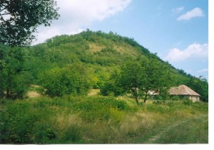 Lesostepný kopec u Hladovca. 7.8.2004.