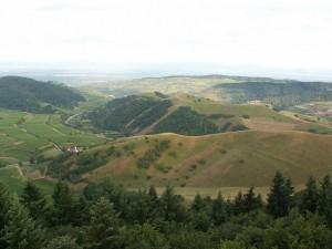 Holé kopce nad dedinou Alt Vogtsburg.