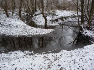 """Sútok Olváru s potokom Berinček. Miesto ulovenia jalca hlavatého. Jalca som zpozoroval už pri príchode k vode, to znamená, že nijak """"nezimoval"""" ale bol aktívný"""