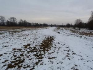 Dedina Ipeľské Predmostie z lúky na západe. 26.12.2011.