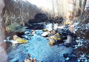 Potok Olvár u Tešmaku. Miesto nálezu žiab.