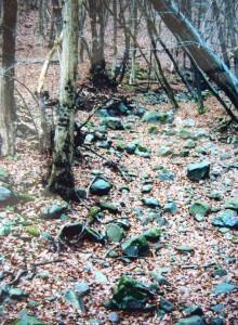 Vyschnuté koryto potoka Olvár medzi Ipeľ. Uľanmi a Plášťovcami.