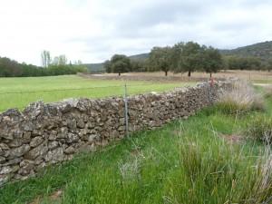 Trasa prechádzky okolo potoka. Všade vo Španielsku sme narážali na kilometre plotov.