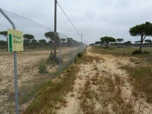 Ďalší z mnohých nekonečných plotov. Teraz okolo Národného parku Doňana.