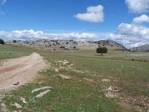 Suchá krajina medzi mestami Ronda a El Burgo na severnej strane pohoria Sierra de las Nieves.