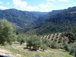 Pohľad do údolia Branco de la Osera.