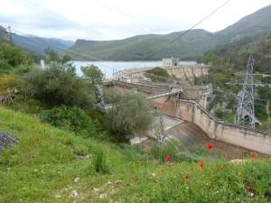 Vodná elektráreň na priehrade Embalse de Tranco de Beas, udávaná lokalita Algyroides marchi.