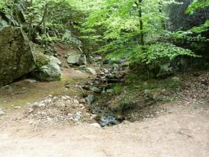 Potok na východ od rekreačného strediska Santa Fé ( Montseny ).