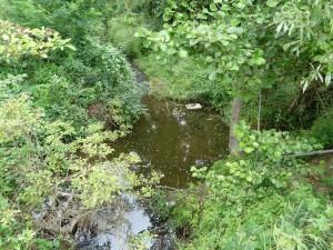 Jedno z najhĺbších miest potoka.