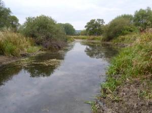 Jazierko vedľa Ipľa, určené asi k zavlažovaniu.