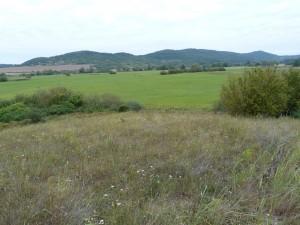 Duna vytvárá kopec nad zátopovou nivou Ipľa. V pozadí sú kopce Krupinskej planiny. Lokalita chránenej krátkonožky štíhlej (Ablepharus kitaibelii).