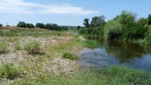 Potok v Biseru.
