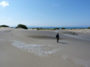 Piesočné duny na pláži u Riumaru, 02.06.2015, 17:09 hod.