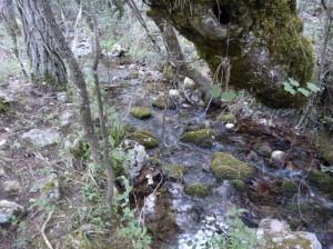 Rieka Rio Mundo u prameňa, bolo strašne málo vody, 04.06.2015, 08:15 hod.