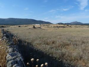 Krajina 1 km južne mesta Las Ventas con Peňa Aguilera. Okolo kamenných múrov behalo veľa králikov 05.06.2015, 08:40 hod.
