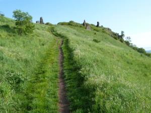 Cesta k hradu Csobánc, 366 m.n.m., vysoká tráva nie je vhodná pre krátkonožky.