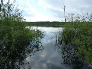 Otvorená voda jazera Baláta-tó.