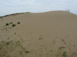 Fülöpháza - pohyblivá piesková duna a okolie. Vstup je možný iba na povolenie.