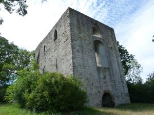 Ruina Helfenberg, 364 m.n.m.