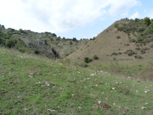 Pramenisko potoka Fiume Alcantara, Floresta.