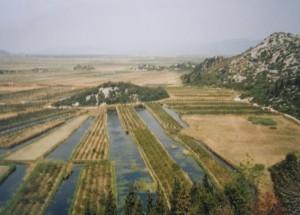 ..delta rieky Neretva, 07.04.2002.....