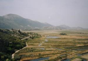 ..delta rieky Neretva. Na úzkych políčkach sa pestujú pomarančovníky. Je to vhodné životné prostredie pre mnoho plazov a obojživelníkov, 07.04.2002.....