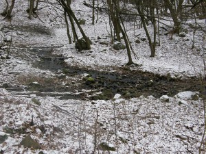 ...Mlynský potok na západ od Ipeľských Uľan...