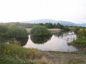 Prírodne jazierko na východe vrcholu Sár hegy. Údajne tu žili korytnačky močiarne ( Emys orbicularis ).