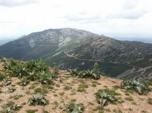 Sierra de la Peňa de Francia, pohľad na sever z vrcholu Buenabarba 1728 m.n.m.