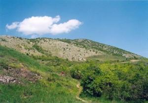 ...Villány-pohľad z juhu na kopec Szársomlyó, lokalita výskytu Coluber caspius, prísně chránena rezervácia , vstup bez povolenia je zakázaný, 29.04.04...